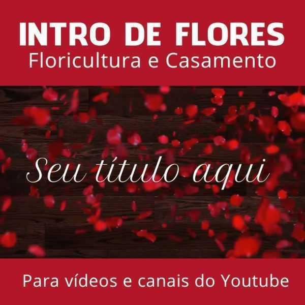 Intro Introdução Vinheta Youtube Vídeo Canal Flores