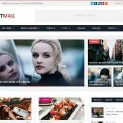 Template Noticias Blog Wordpress Responsivo 720 S