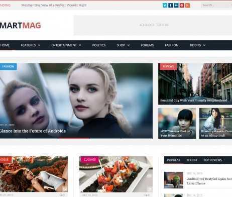 Template Noticias Blog Wordpress Responsivo 720 S