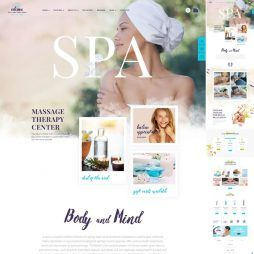Template Spa Salão De Beleza WordPress Responsivo 800 v1
