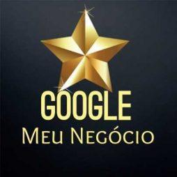 5-recomendacoes-positivas-google-meu-negocio-D_NQ_NP_889163-MLB30088458275_042019-F