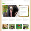 Criar Site Ecologia Natureza WordPress Responsivo 877