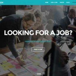 Template Vagas de Emprego WordPress Responsivo 884