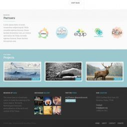 Template para Ongs WordPress Responsivo 863 v3