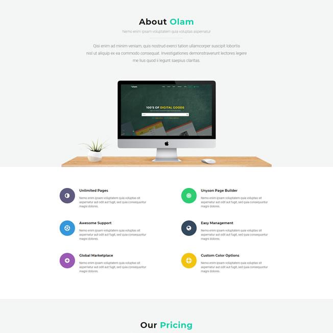 Loja Virtual Produtos Digitais Marketplace WordPress Responsivo 936
