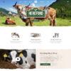Criar Site Agricultura Fazenda WordPress Responsivo 1177