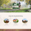 Criar Site Fazenda Haras WordPress Responsivo 1180