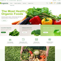 Loja Virtual Produtos Orgânicos