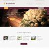 Criar Site Funerária WordPress Responsivo 1292