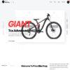 Loja Virtual Bicicleta Bike WordPress Responsivo 1363 S