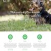 Criar Site Petshop Petcare WordPress Responsivo 665